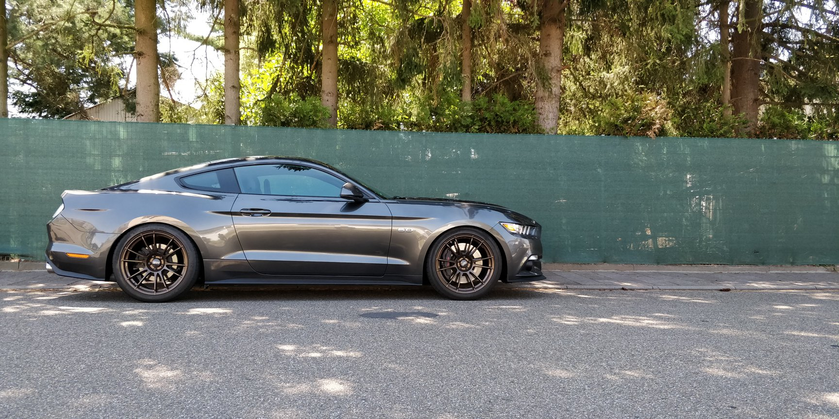 Ford Mustang Abstimmung RSC